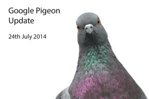 google-pigeon-pigeon-pic