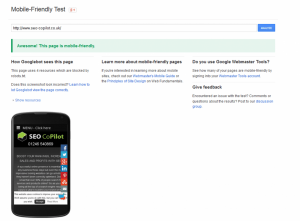 Screenshot showing that SEO CoPilot is mobile friendly